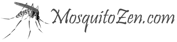 life lessons we can learn from mosquito swatting